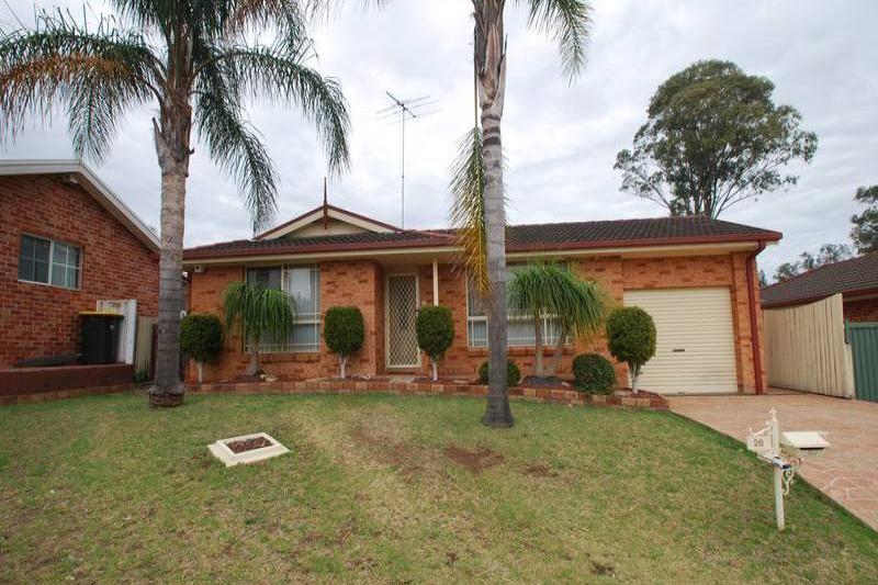 PRESENTATION PLUS STUDY Homeland Real Estate Mesmerizing Backyard Plus Property